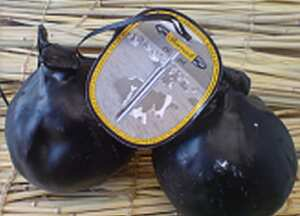 Lancashire Black Bomb Cheese Suppliers Pictures Product Info