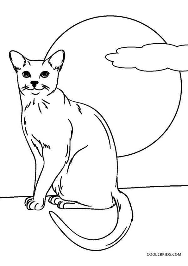 black cat coloring page # 3