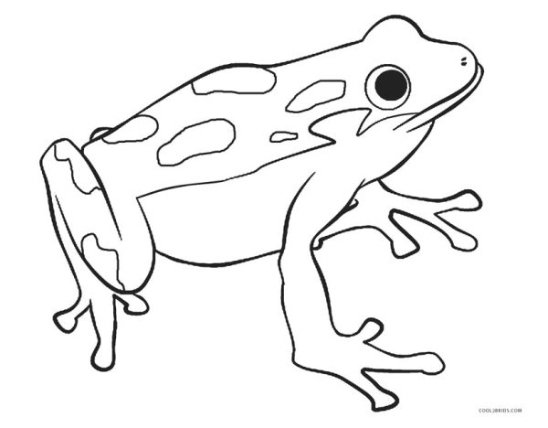 frogs coloring pages # 1