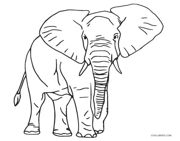coloring pages elephant # 0