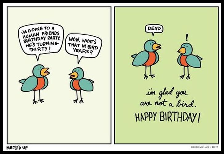 Happy Birthday Card Jokes