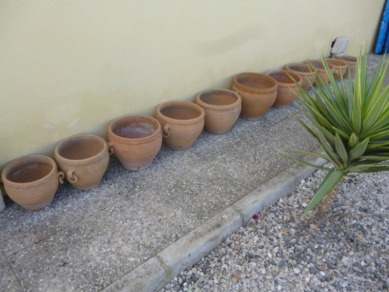 For sale  Ceramic Terracotta planters   Buy and sell items in Catral     For sale  Ceramic Terracotta planters