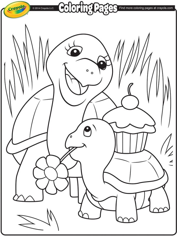 coloring pages turtle # 17