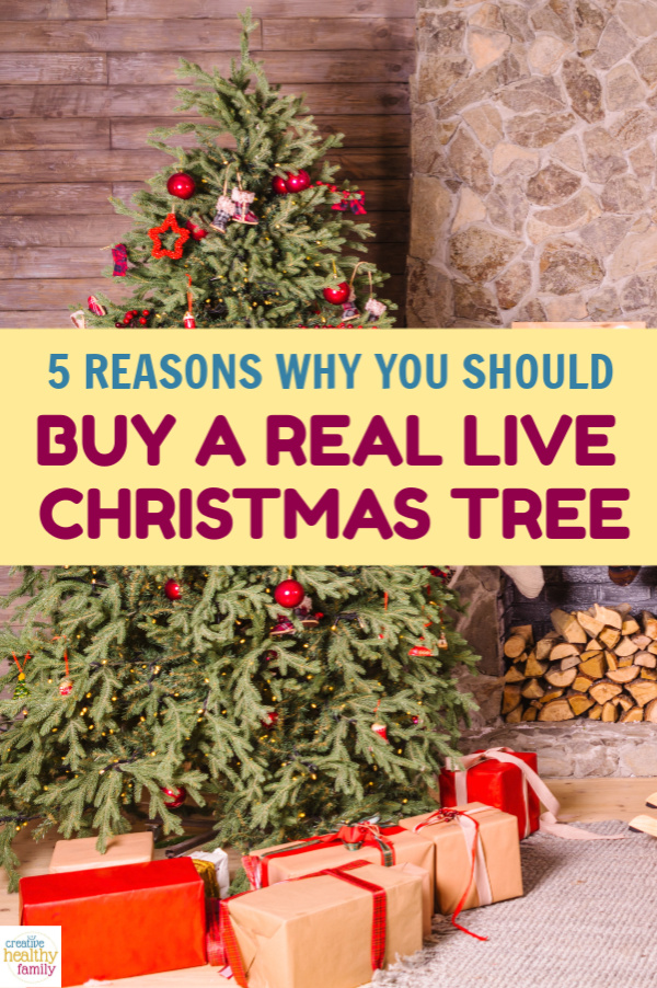 5 Reasons Why You Should Buy A Real Christmas Tree ...