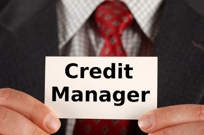 Blog Of Credit Management Tools Credit Manager Anatomy