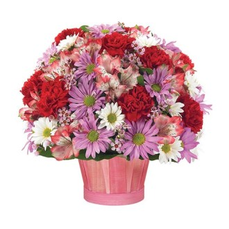 Homepage   Cute Flowers   Gifts  A Few of My Favorite Things  baskets of flowers  BF119 11KL