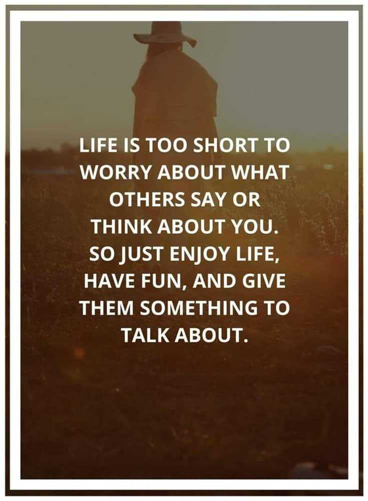 Quotes Life Funny Lessons Memes About