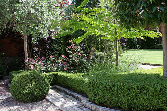 Large Suburban Garden Damian Costello Garden Design