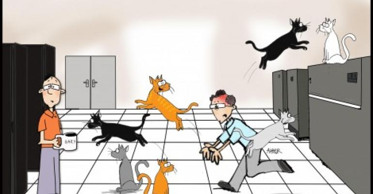 Friday Funny Herding Cats On The Raised Floor Data
