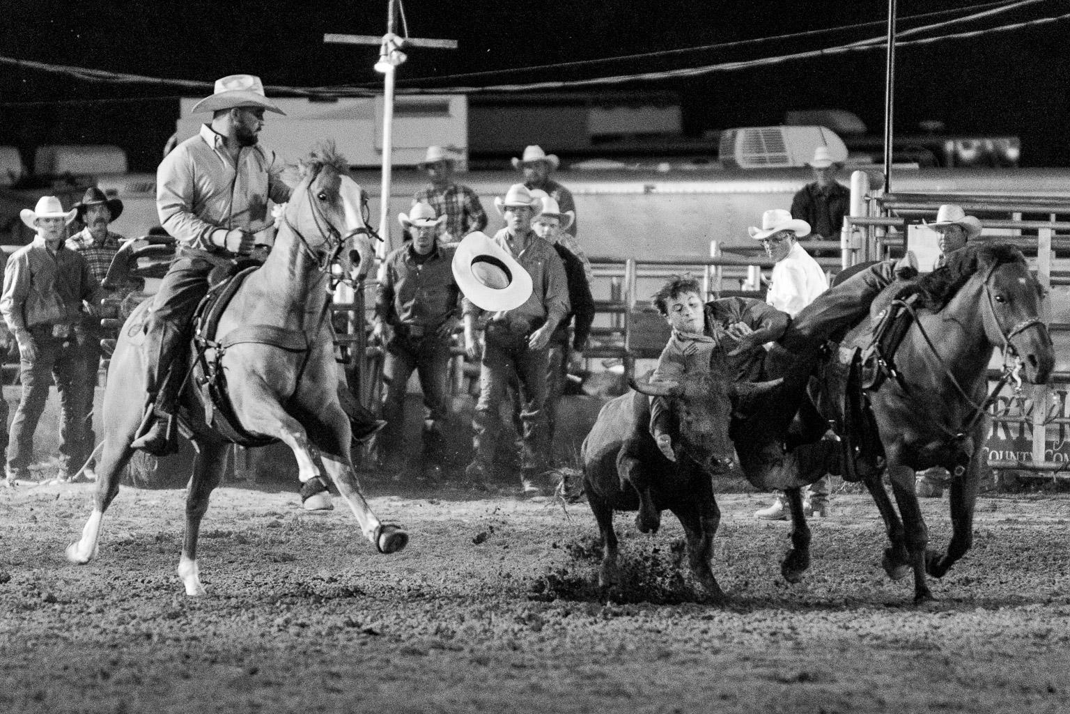 Bulldogging At Wimberley Rodeo Dave Wilson Photography