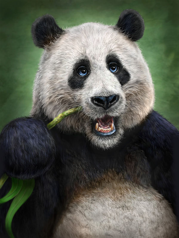 Panda Totem By Patrick Lamontagne Decalgirl