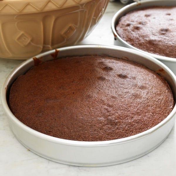 Simple Basic Cake Recipe