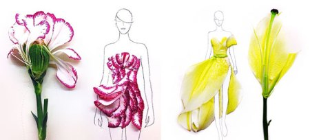 Designer Turns Real Flower Petals Into Fashion Illustrations