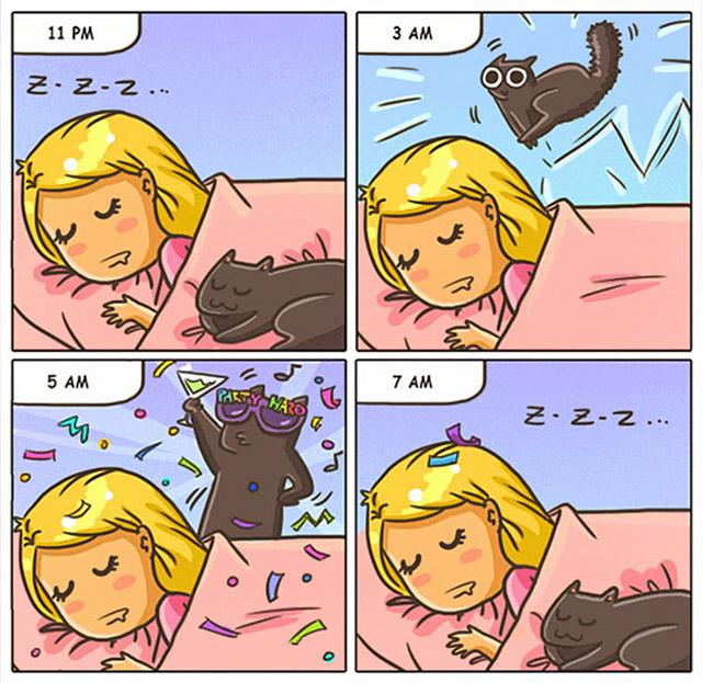 15 comics show why its never boring live cat, funny cartoons pun cat