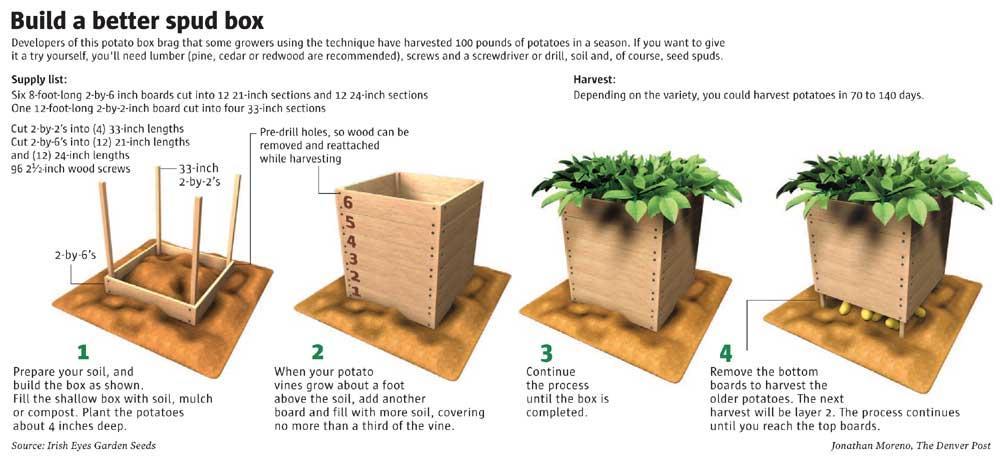 Garden Grow Box Plans