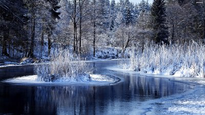 Winter Pictures, Images, Graphics