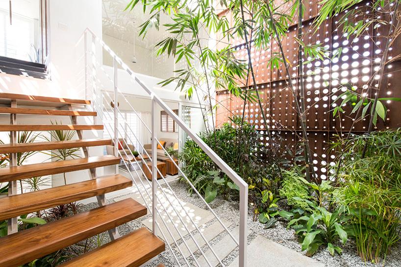 Popular Indoor House Plants