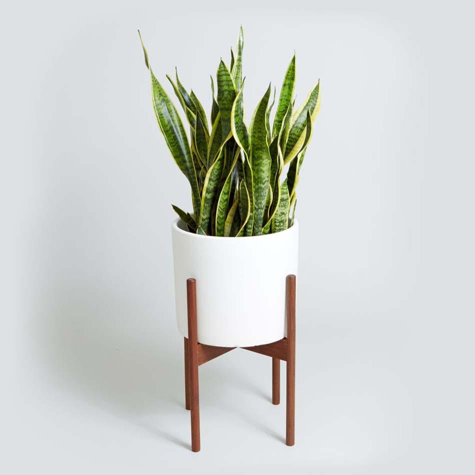 Ikea Plant Holder