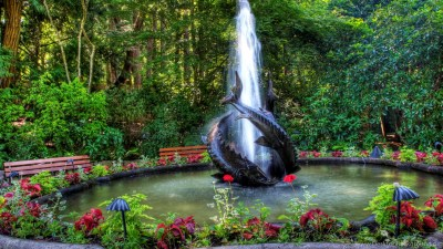 Garden Full HD Attractive Wallpapers Free HD Wallpapers ...