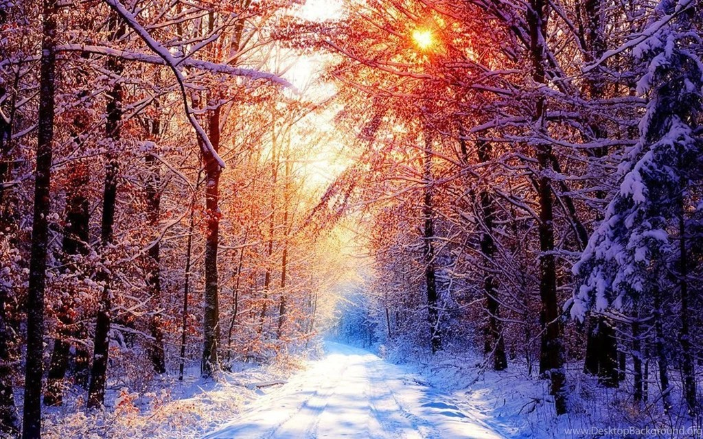 Winter Backgrounds Tumblr 2015 Desktop Background