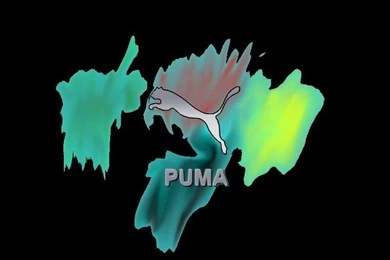 Green puma logopuma logo wallpaper 6586 hd wallpapers in ...
