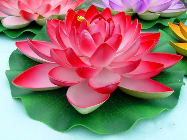 28cm Artificial Lotus Flowers Water Lily Wedding Decoration     28cm Artificial Lotus Flowers Water Lily Wedding Decoration Available Diy  Flowers for Garden Decoration Artificial Flowers Garden Decoration Online  with