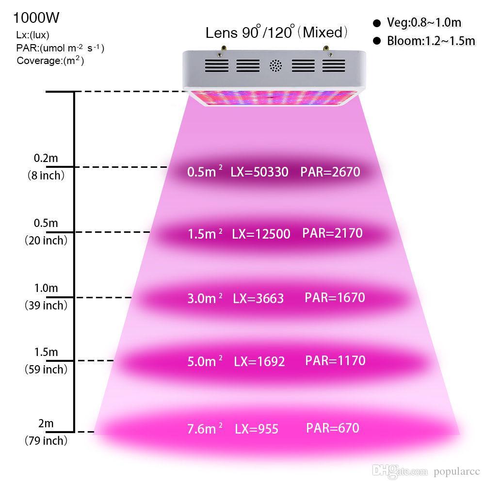 Led Grow Light Distance Plant