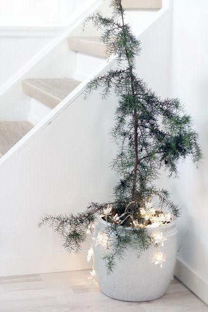 Modern Wall Lights