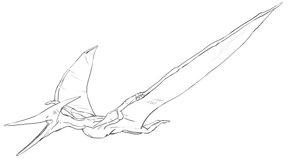 pterodactyl coloring page # 6