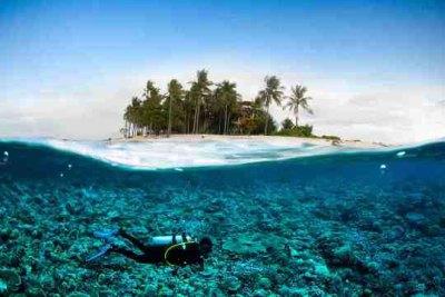 Diving at Lembongan and Nusa Penida, Bali | Dive The World ...