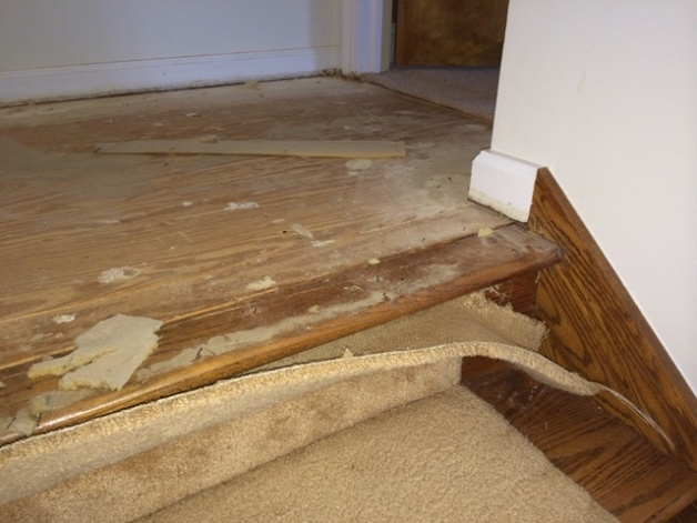Switching From Carpet To Hardwood On Stairs Flooring Diy | Carpeted Stairs To Hardwood | Textured | Fully Carpeted | Staircase | Wall To Wall Carpet | Dark Wood