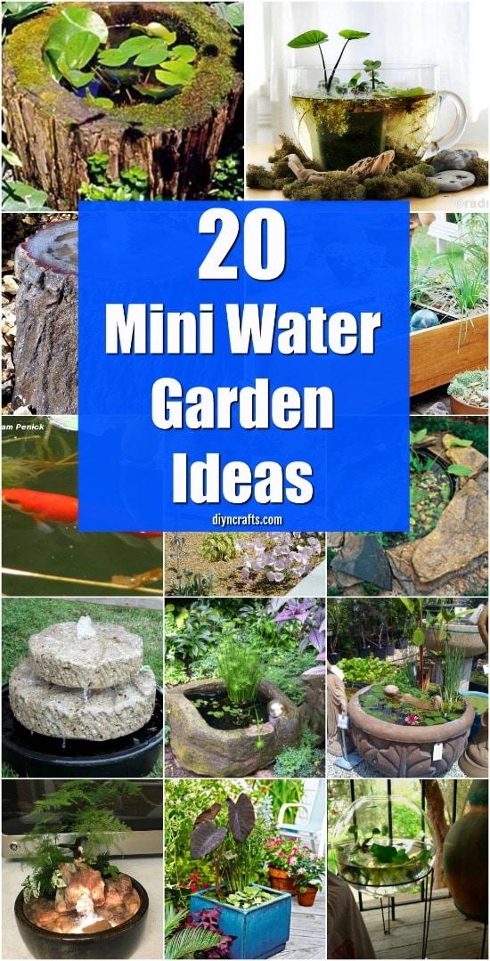 Cheap Backyard Pond Ideas