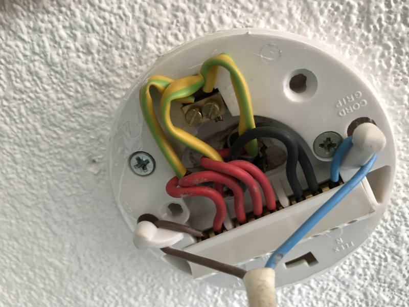 Ceiling Rose to Wago Connectors   DIYnot Forums My bedroom ceiling light needs replacing  I currently have a ceiling rose  connector which needs to be changed using wago connectors