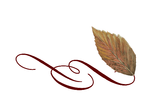 Fall Wedding Announcements