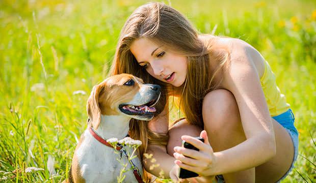 Door Training Bell Dog