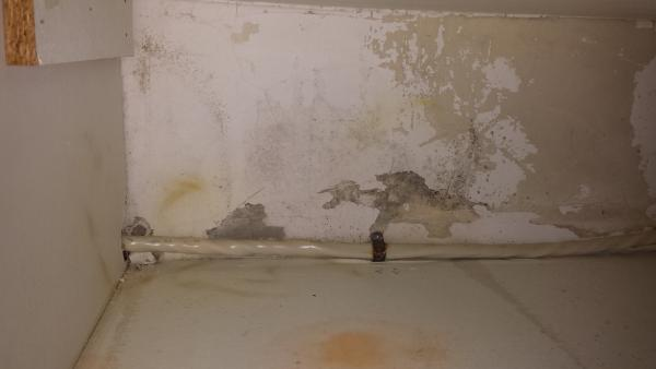 Mold In Back Of Kitchen Cabinets Doityourself Com