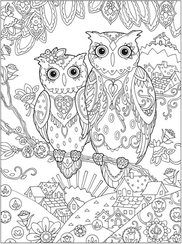 owl color pages # 59