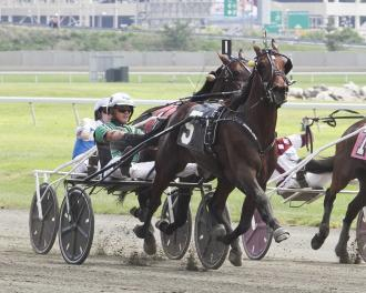 Yonkers Resolve Favored In 1 000 000 International Trot