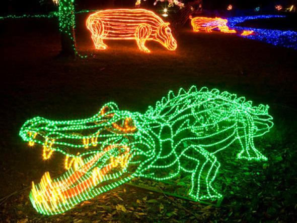 Christmas Lights Denver Zoo