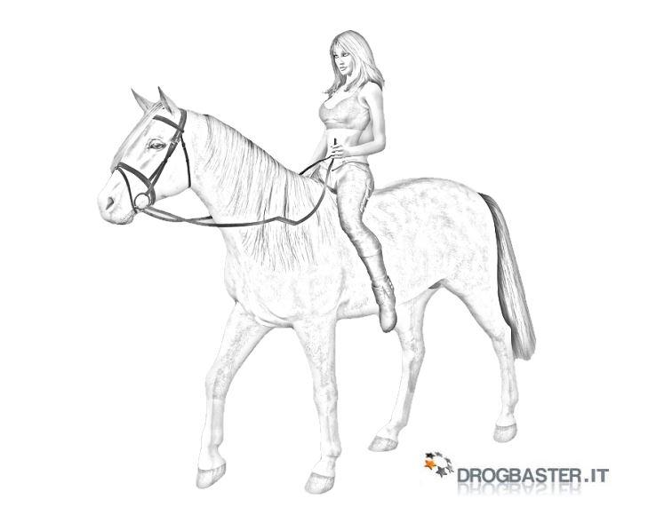 Cavallo immagini e disegni da stampare for Disegni cavalli da stampare