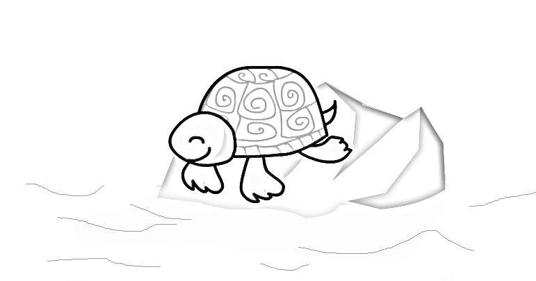 Tartaruga Da Colorare Migliori Pagine Da Colorare