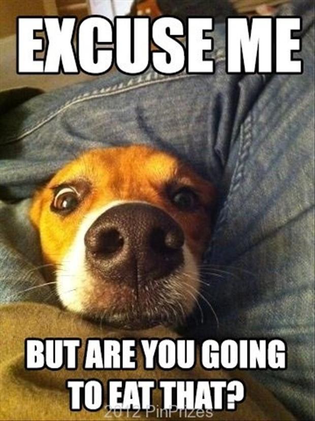 Memes Stalker Facebook Funny
