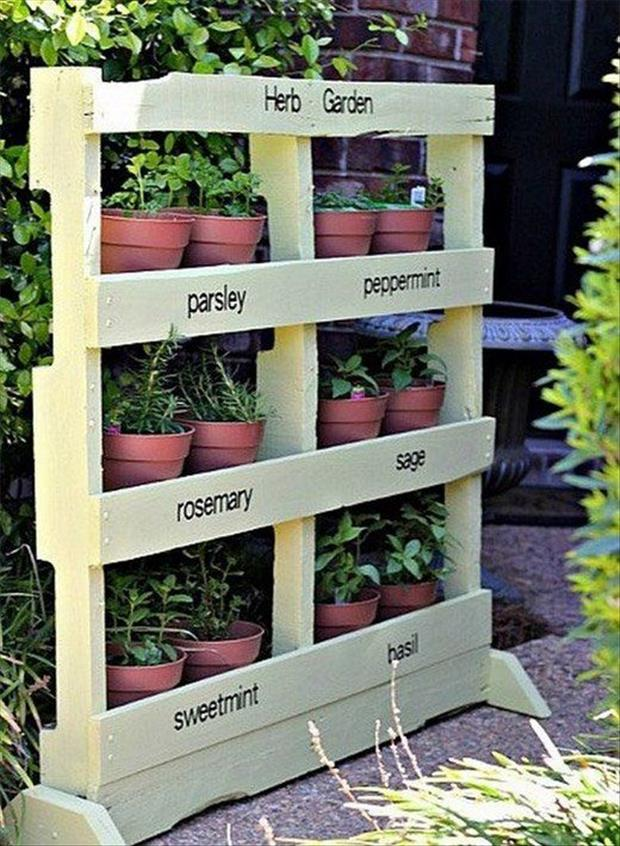 Vegetable Planter Box Design