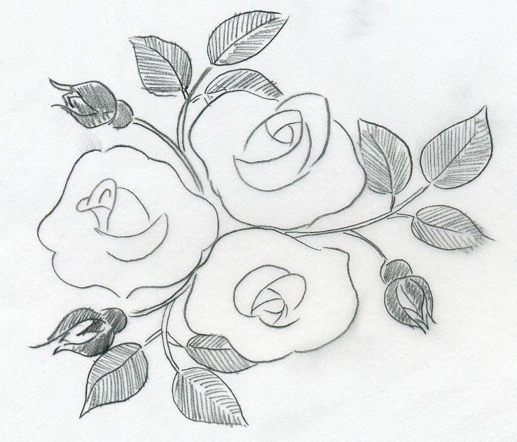 Simplest Flower Drawing