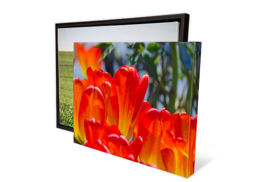 Canvas Prints by Easy Canvas Prints - 25% Off + FREE Shipping!
