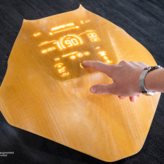 augmented wood