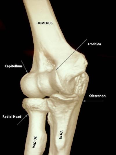 Pain Around Left Arm Elbow