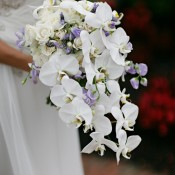 Tall Orchid Centerpiece Elizabeth Anne Designs The