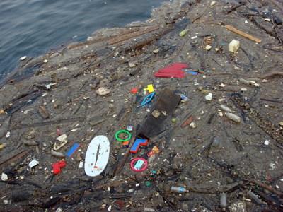 P L A F › Trash Island