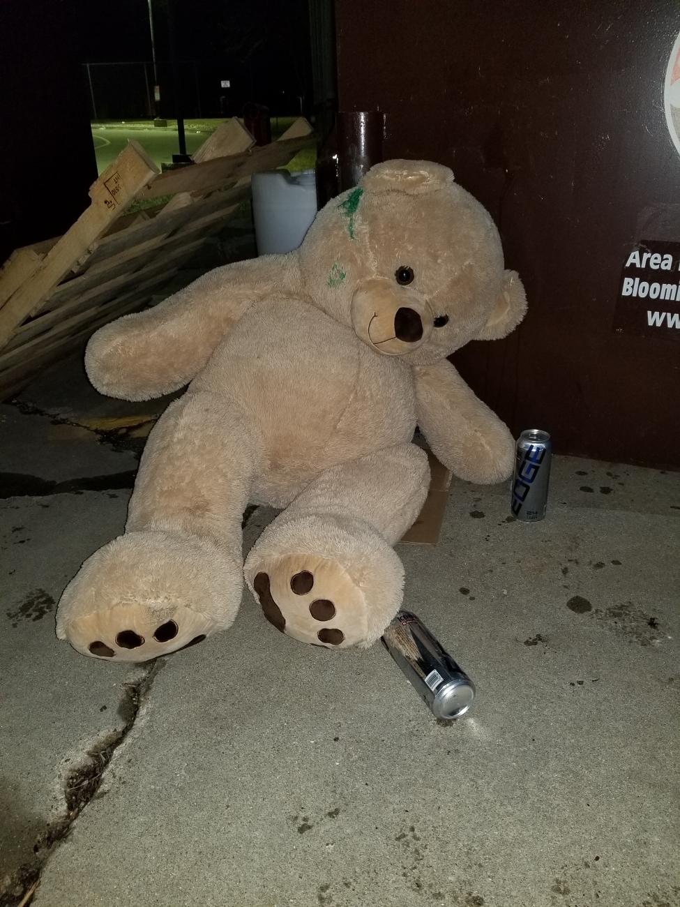Drunk Teddy Bear By Lude69dotcom Ephotozine
